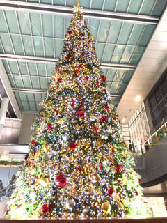 巨大クリスマスツリーの写真・画像素材[931080]