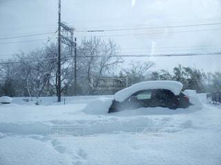 大雪でした。の写真・画像素材[332595]
