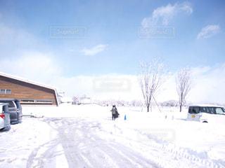 No.332597 雪