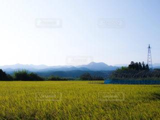 風景の写真・画像素材[335929]