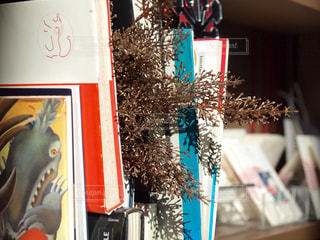 植物 - No.345115