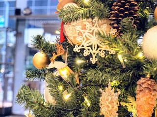 クリスマス ツリーの写真・画像素材[907960]