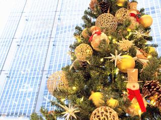 クリスマスツリーの写真・画像素材[907961]