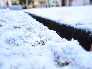 雪に覆われたフィールドの写真・画像素材[1000093]
