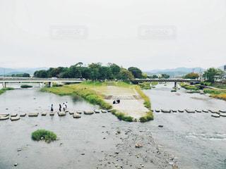 鴨川の写真・画像素材[1534349]