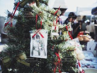 クリスマスツリーの写真・画像素材[1654547]