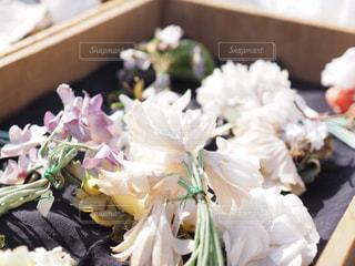 近くの花のアップの写真・画像素材[1664097]