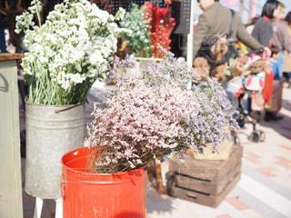 ブリキのバケツに入った花束の写真・画像素材[1664117]