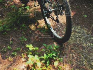 自転車の写真・画像素材[2019681]