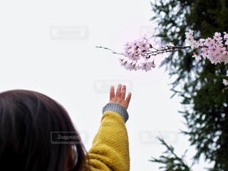花を持っている人の写真・画像素材[2902858]