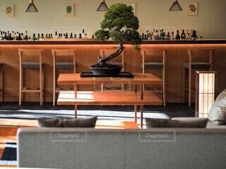 松の飾られたラウンジの写真・画像素材[3734105]