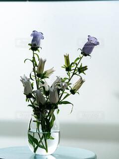 グラスの花瓶に入ってた花の写真・画像素材[4266211]