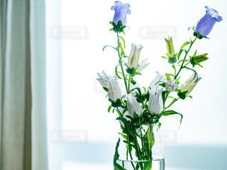 花瓶に入れた花の写真・画像素材[4266215]