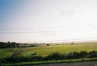 川べりの道の写真・画像素材[4762009]