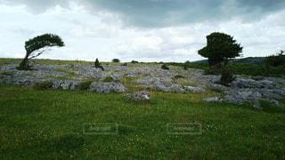 イギリスの風景の写真・画像素材[928497]