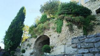 植物と共に生きる家の写真・画像素材[929327]