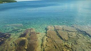 透明な湖の写真・画像素材[929475]