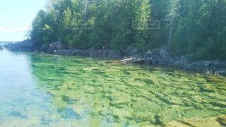 透きとおった湖の写真・画像素材[929476]