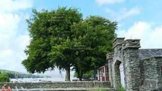 湖のほとりにある石造りの家とツリーの写真・画像素材[931762]