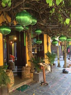 ベトナム ホイアン 緑のランタンが飾られたカフェの写真・画像素材[928389]