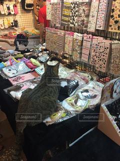 台湾 ホウトン お土産の上に座る猫の写真・画像素材[928526]