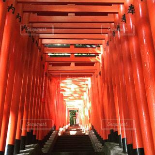 東京 日枝神社の千本鳥居の写真・画像素材[928677]