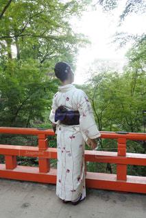 京都 赤い橋から新緑を眺める女性 - No.928873