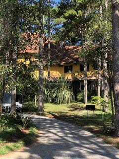 ベトナム ダラット アナマンダラホテルの写真・画像素材[1190569]