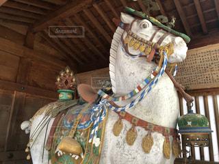白山比咩神社 神馬の写真・画像素材[2922202]