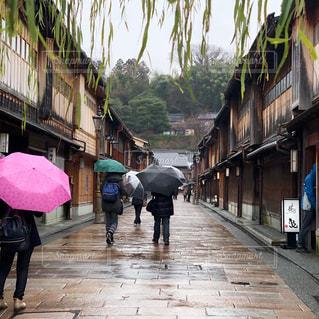 小雨に濡れる1月の金沢東茶屋茶屋街の写真・画像素材[2932736]