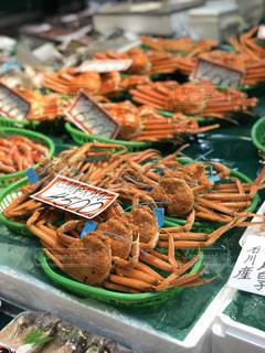 金沢近江町市場に並ぶたくさんのズワイガニ。の写真・画像素材[2932732]