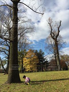 公園と息子 - No.928551