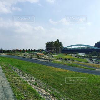 背景の木と大規模なグリーン フィールドの写真・画像素材[928953]