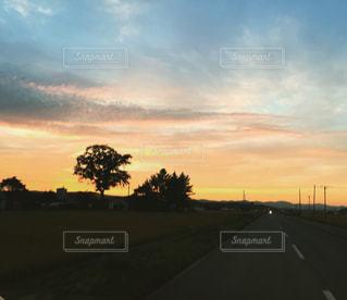 夕焼けの空と道の写真・画像素材[929042]