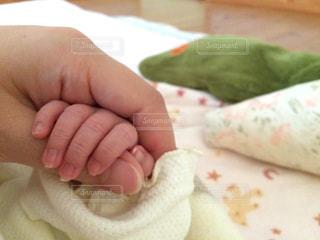 赤ちゃんの手の写真・画像素材[964719]