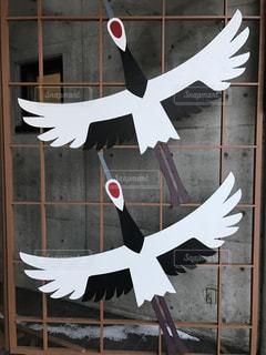 飛んで行く鶴。の写真・画像素材[929271]