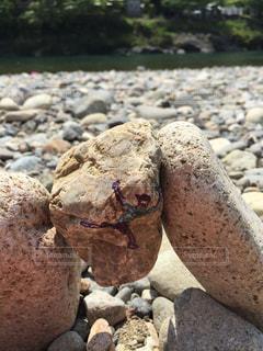 岩遊びの写真・画像素材[932484]