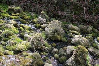 岩と川の写真・画像素材[4324919]