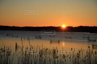 沼に昇る太陽の写真・画像素材[934202]
