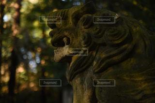 神社の狛犬 - No.933532