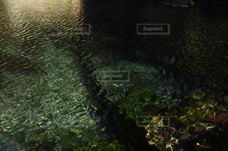 川の画像の写真・画像素材[935385]
