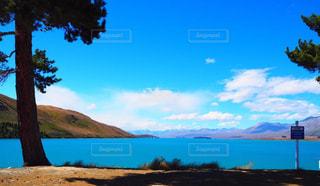 プカキ湖の眺めの写真・画像素材[936773]