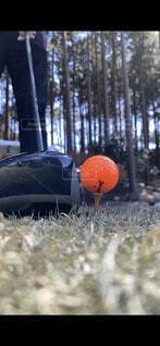 ゴルフのティーショットの写真・画像素材[4891077]
