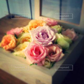Flowers 6の写真・画像素材[937679]