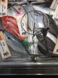 スーパーの鮮魚コーナーに並ぶ魚たちの写真・画像素材[934166]