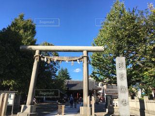 浅草神社の写真・画像素材[934335]