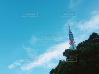 東京タワーの写真・画像素材[934823]