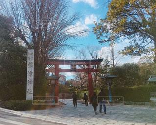 根津神社の写真・画像素材[1005441]
