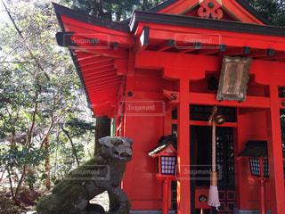 曽我神社の写真・画像素材[1012401]