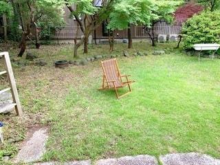 庭のベンチの写真・画像素材[3388623]